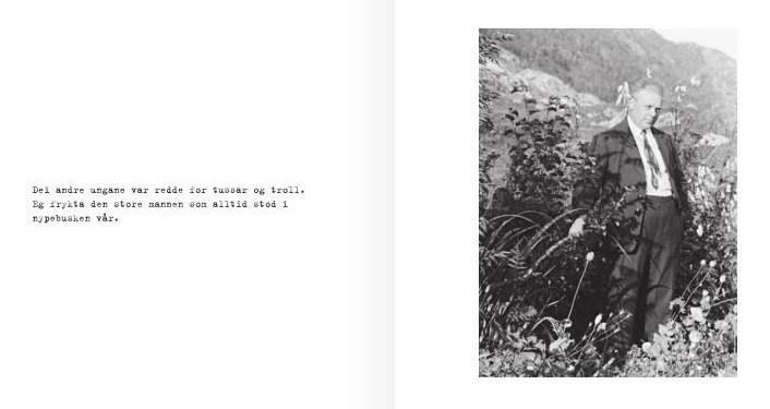 Mannen i nypebusken
